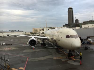 エティハド航空ビジネス&エコノミークラスで行く?ミラノ、アブダビ一人旅 その1ビジネスとエコ乗り比べ!?でミラノまで