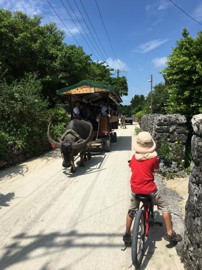 夏旅4 赤瓦屋根の竹富島をサイクリング!米原海岸でシュノーケリングも