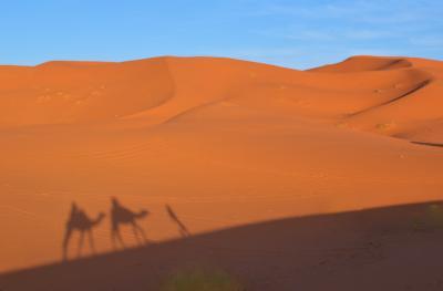 一緒なら*もっとイケる、魅惑のモロッコ2019*②砂漠のほとりメルズーガでラクダに乗ってみた~.☆*