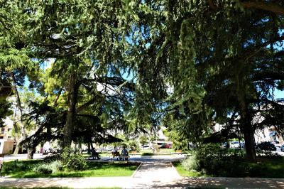 魅惑のシチリア×プーリア♪ Vol.785 ☆ルーヴォ・ディ・プーリア:美しい広場と後ろ姿の大聖堂♪