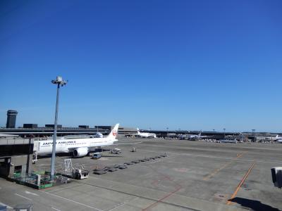 成田空港へ  ロシアへの旅  その1