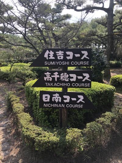 宮崎旅行のクライマックス