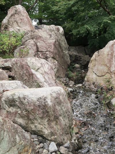 昭和記念公園-1 西立川駅~入口まで2分 渓谷気分も ☆レンタサイクル1日券-滞在4.5時間