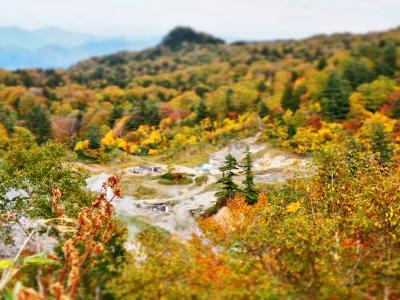 紅葉とくっさーーい温泉を求めて 秋田八幡平ドライブ