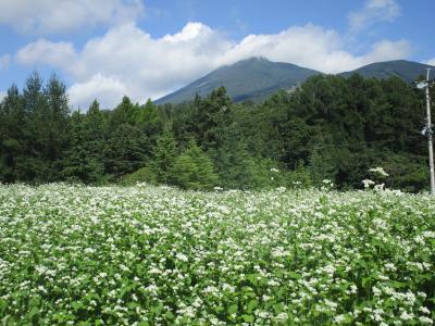 東北みちのくドライブ旅・P5.「岳温泉」と「安達太良山」