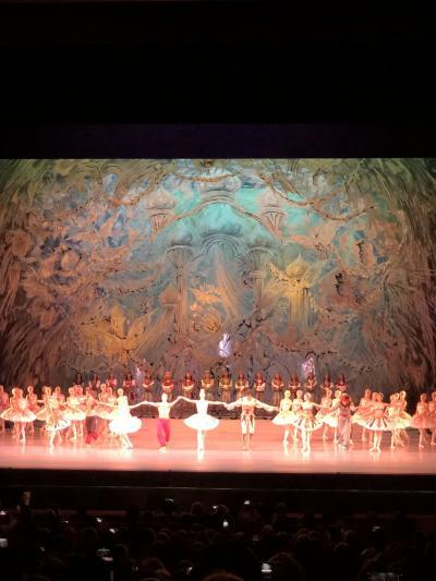 落ち葉のダンス 憧れのロシアバレエを観て 成田からサンクトぺテル編 その2