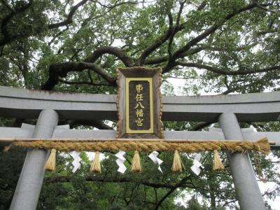 由緒ある神社「事任八幡宮」に訪問 (掛川市)