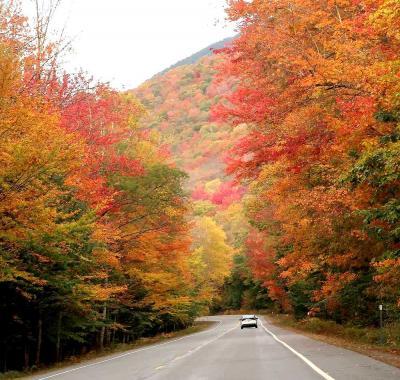 団塊夫婦の2019年北米紅葉ドライブ旅行ー(5)圧巻のカンカマガスハイウェイを走る