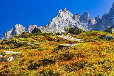 初秋のシャモニーとラヴォーを巡る旅(1)「レストラン・フローリア」へランチハイキング