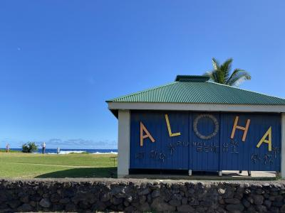 家族で真冬のハワイ島!! マンタにクジラにウミガメに (前編)
