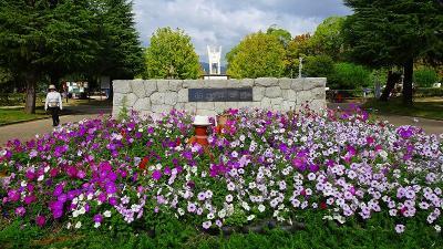 1ヶ月半ぶりの西武庫公園花壇へ その1。