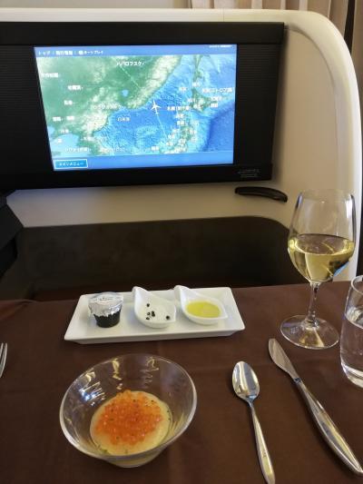 主婦のひとり旅 パリ&フランクフルト 行きはファーストクラス 帰りはビジネスクラス 特典航空券の旅①