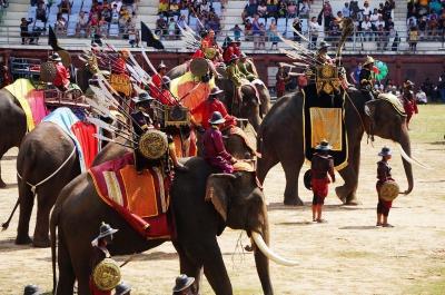スリン 象祭りにチケットなしで行ってみる (Elephant Roundup festival without reservation)