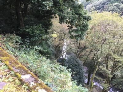 久しぶりに下田に行く途中に浄蓮の滝に立ち寄りました。