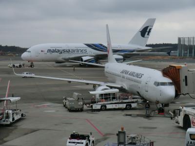 第50回海外旅/パンスタークルーズ[復路]&釜山・その1.韓国再入国‥JALビジネスクラスで釜山へ。