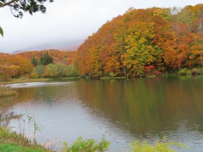 晴れおじさん「秋だ、紅葉だ、新そばだ」 (その1)