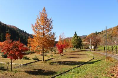 福井・九頭竜湖と刈込池の紅葉を見に行ってみました。