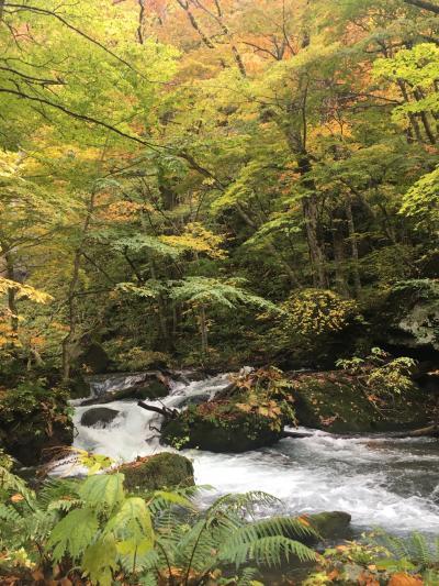 秋の八甲田山、奥入瀬、十和田湖2019