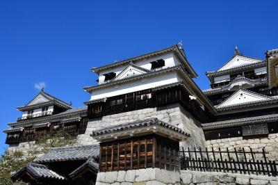 愛媛県:松山城、湯築城(その1)