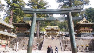 東北5県の桜の見どころを巡る旅