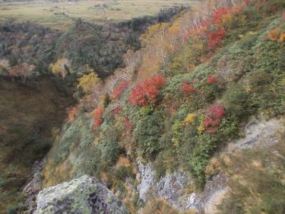 秋の立山黒部アルペンルート2日目(弥陀ヶ原~一の谷・獅子ヶ鼻~天狗平)+金沢散策