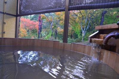 モニタープランでお得にプレオープンの高級宿へ⇒蘇った「稲住温泉」!