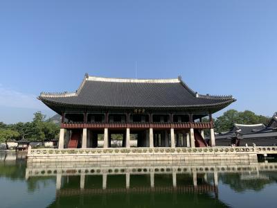 10月ソウル  韓方の旅2
