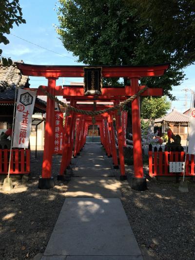 於菊稲荷神社⛩