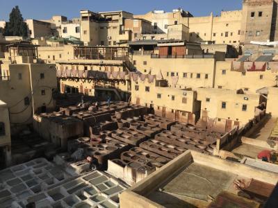 モロッコ2~3日目◆フェズ ヴォルビリス遺跡とフェズのメディナ