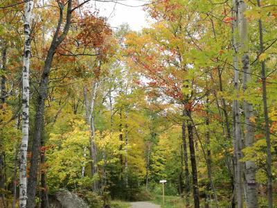 カナダ メープル街道 女一人旅4(モン・トランブラン1日目 紅葉ハイキング)