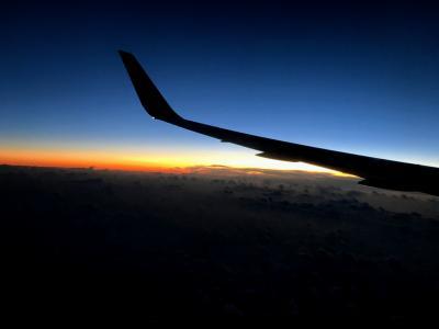 [2019 ハワイ] Leg.3 《NRT→HNL》デルタ航空/DL180便 搭乗記