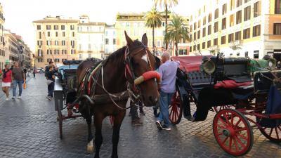 スリに、ぼったくり、ストライキもあった弾丸3泊5日ローマ観光Part2 1日目午後編