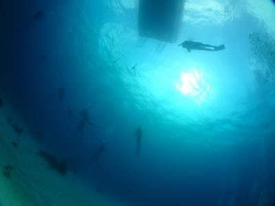 のんびり宮古島ダイビング&グルメ