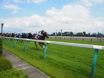 2019夏休み 11連休中唯一の遠出は新潟競馬観戦&ちょっとだけ新潟市内観光