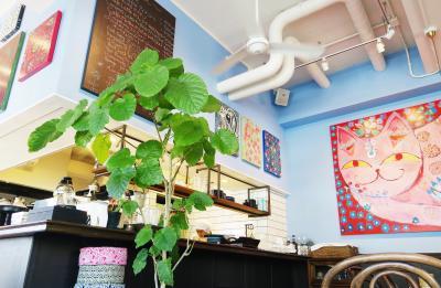 Japan こびとの小屋からはじまる楽しい旅 カフェ・アンサンクとカフェ・アリッサラ