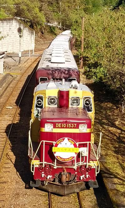 わたらせ渓谷鐵道トロッコ列車に初乗り