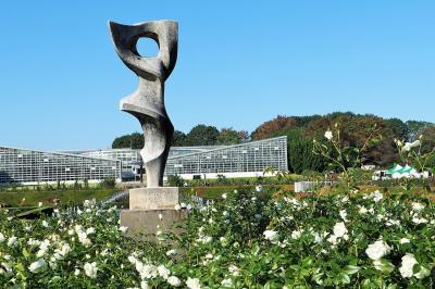 調布・神代植物公園~秋のバラフェスタ&新しいカメラの試し撮り