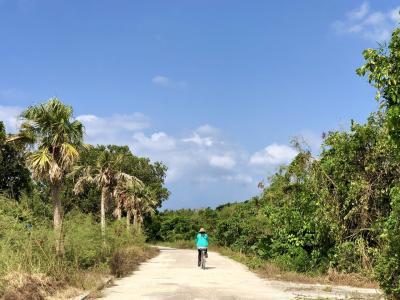 無人島のバラス島でシュノーケリング、最終日はレンタルサイクルで竹富島を周る
