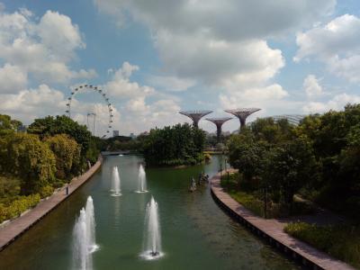 初めてのシンガポール夫婦旅⑤ガーデンズ・バイ・ザ・ベイとアフタヌーンティ・帰国