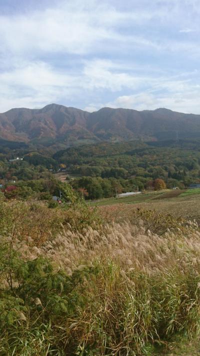 秋の西蔵王高原