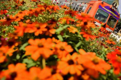 岳南電車を走る「ハロウィン電車」と吉原商店街のハロウィンパーティーを見に訪れてみた