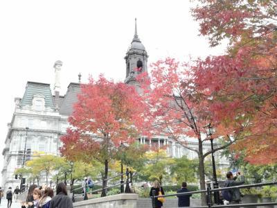 カナダ メープル街道 女一人旅8[完](モントリオール ノートルダム大聖堂、ジャンタロン市場、帰国)