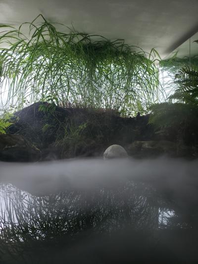 古牧温泉 青森屋(1)