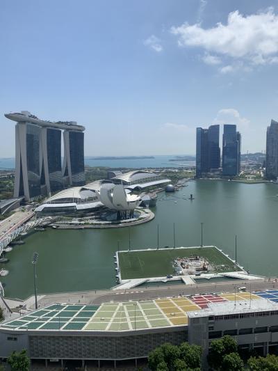 ダウン症のエリちゃん シンガポールに行く