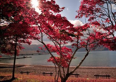 最高の紅葉時期の奥入瀬渓流と十和田湖湖畔散策そして日本キャニオンの旅