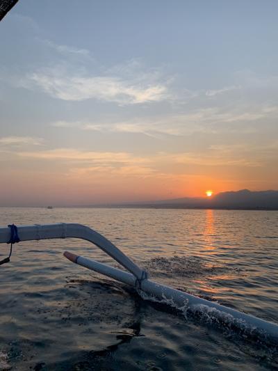 バリ島ダイビング&イルカウォッチング旅行~ムンジャンガン~