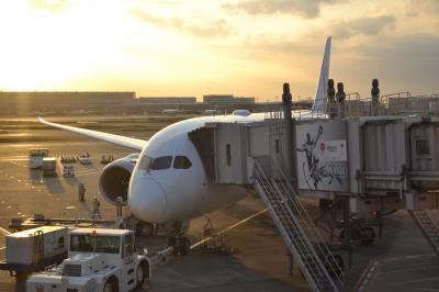 【そうだ、京都行こう…JALで。】(1)就航2日目!JAL国内線787ファーストクラス搭乗記