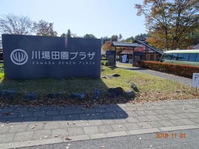 2019年10月/新米を求めて新潟/道の駅南魚沼+道の駅「川場田園プラザ」MyCar