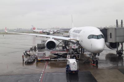 A359+B738、羽田から福岡経由那覇まで、新機材の乗り心地と空港を楽しむ。