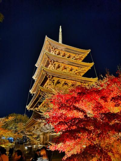 11月の三連休。京都の紅葉三昧。夫婦で京都いこう